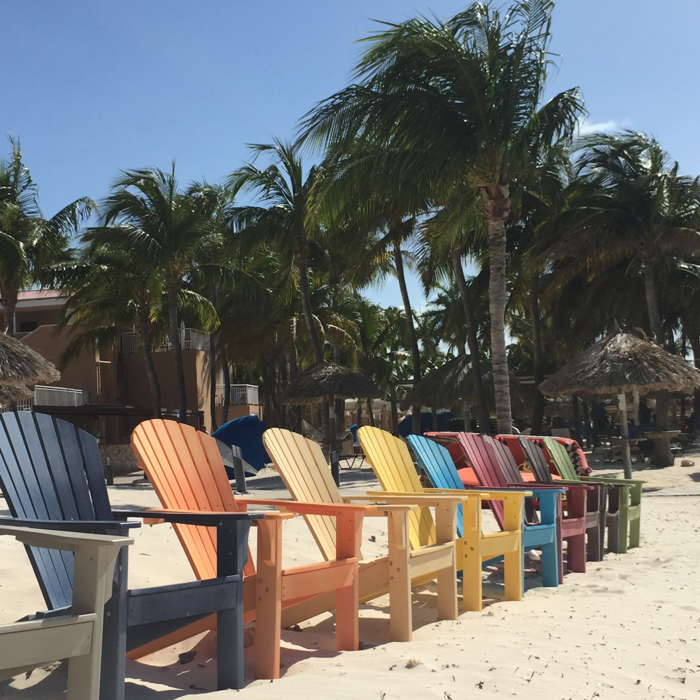 Lined up sunchairs