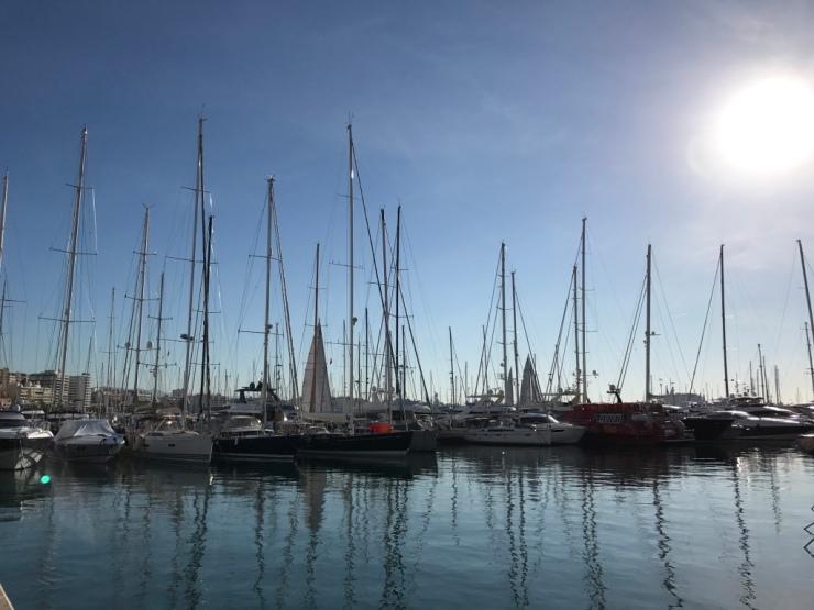 Sail boats Mallorca