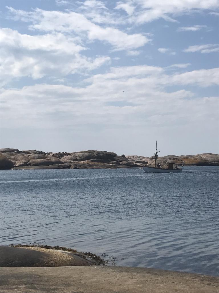 Vallevik