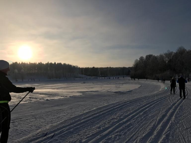 Skidspår i Stockholm